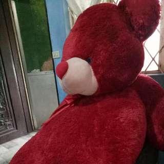 Life Size Teddy Bear From Blue Magic