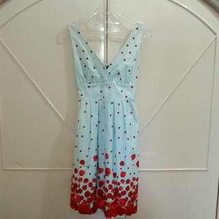Blue Red Apple Dress