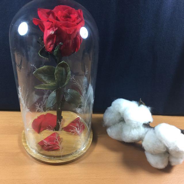 Diy Beauty And The Beast Enchanted Roses Jolanda Flowers