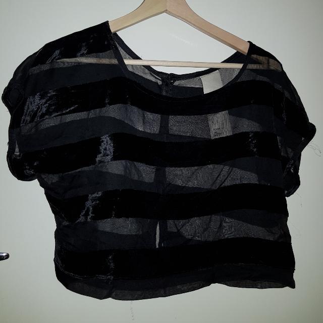 Transparent Black Crop Top With Velvet Stripes Buttoned Back
