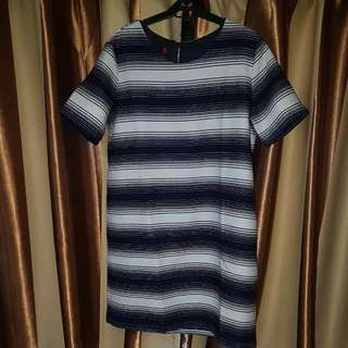 Woman Career Blue & White Stripped Dress Plus Size