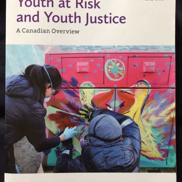 Youth At Risk And Youth Justice
