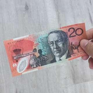 $20 US Dollars