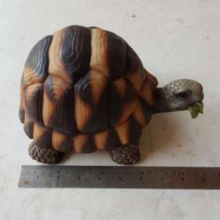 Star Tortoise Decoration For Garden