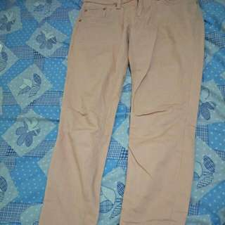 Origanal JAG Pants For Women