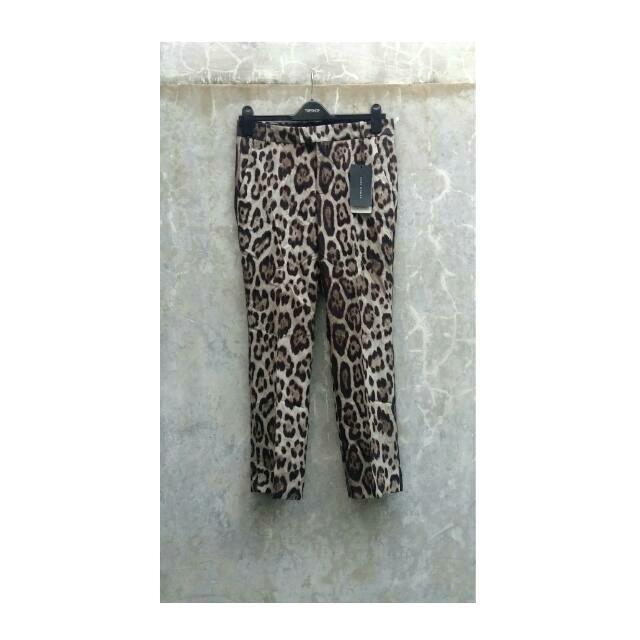 Zara Leopard Pants