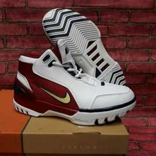 Nike Lebron 1 Generation Shoes