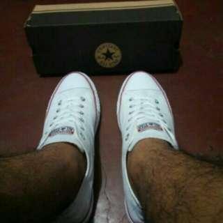 Converse White Shoes