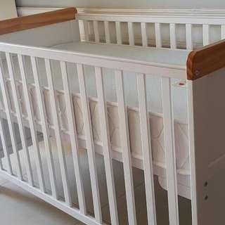 Cuddlebug Fontana 2-in-1 Convertible Crib with Cuddlebug Cool Comfort Spring Crib Mattress