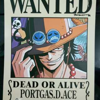 One Piece Wanted Poster 11pcs in a set