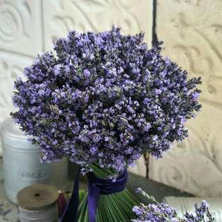 Bunch Of Lavender Hand Tied - Colleen
