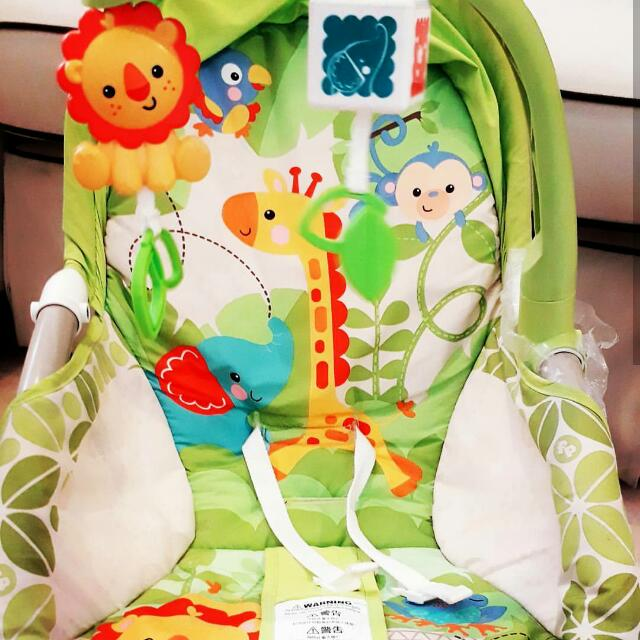 Fisher Price Rocking Bouncer
