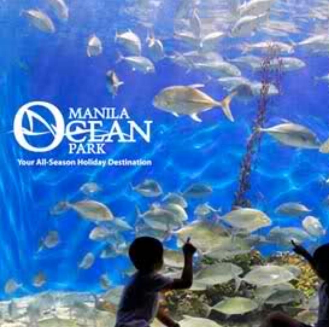 Manila Ocean Park Discounted Tickets