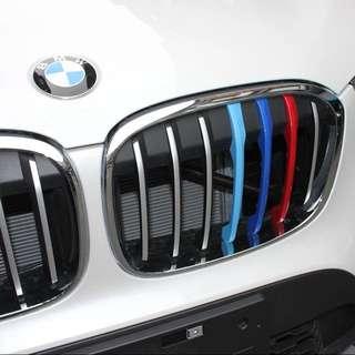 BMW X1 M Clip On Grills