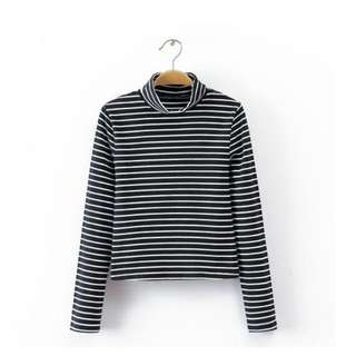 Striped Crop Turtleneck