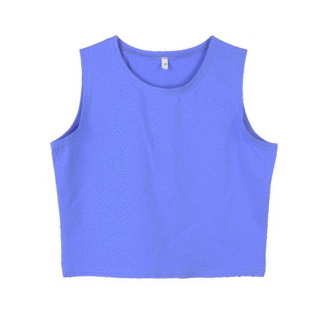 Blue Small Crop Top
