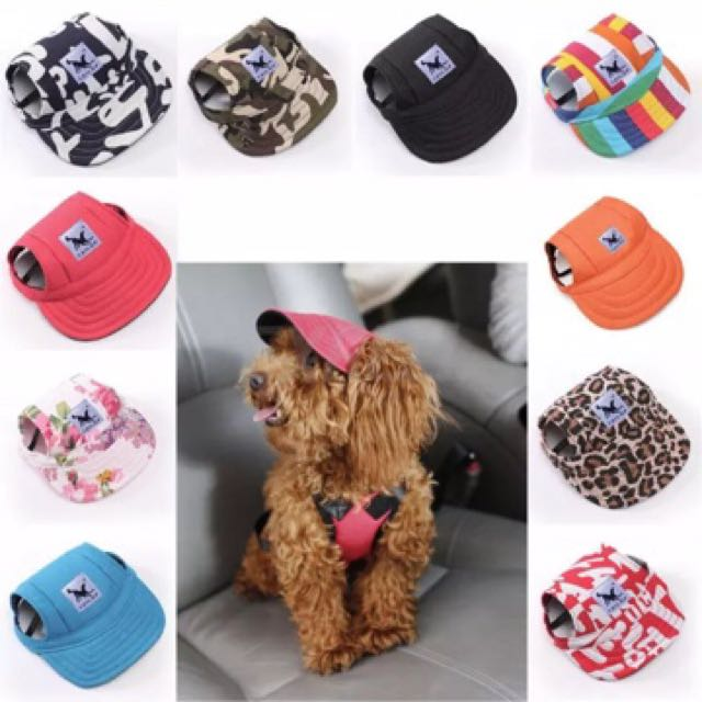 Cute Dog Hat