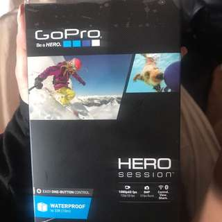 GO PRO HERO SESSION