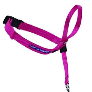 BN Gentle Leader Head Collar In Raspberry (Small)