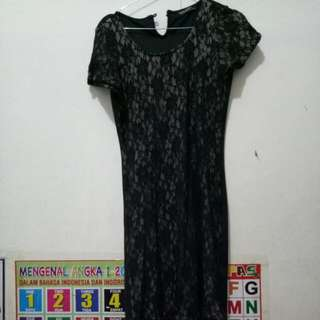 dress brand