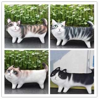 Cat Cushion - Sofa