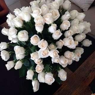 White Roses Long Stems - Helene