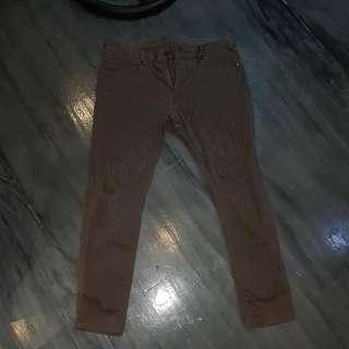 Uniqlo Dark Brown Pants
