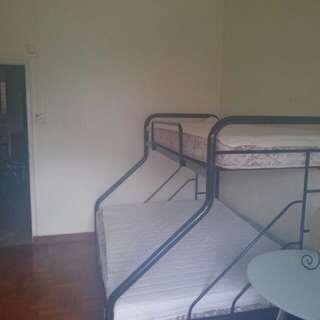 Double Decker / Double Bunk Bed