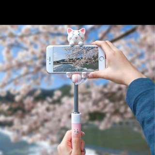 cat selfie stick / mobile phone holder