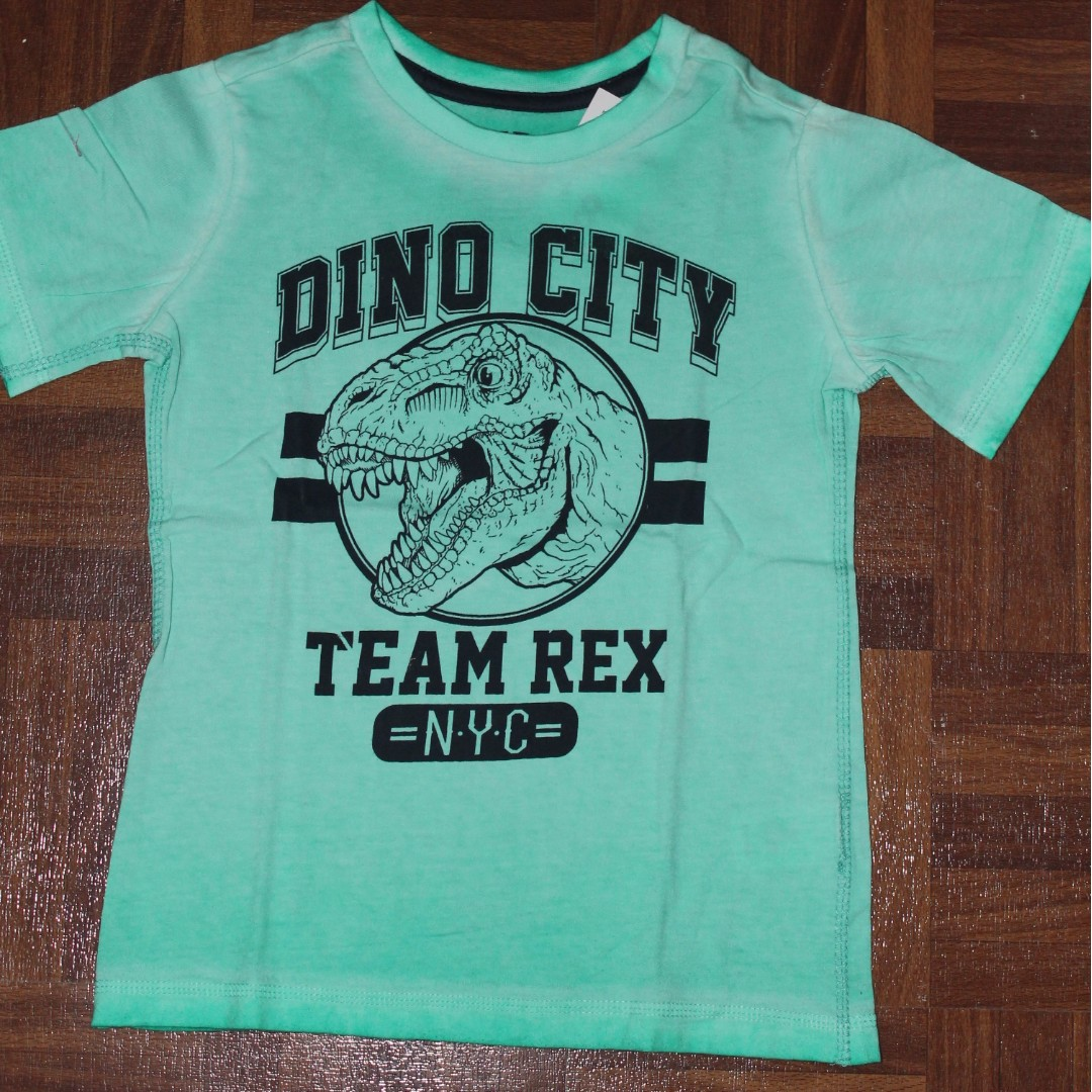Boys Distressed T Shirt Dino City