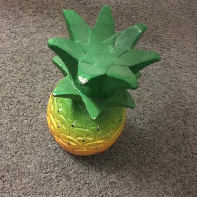 ornamental pineapple