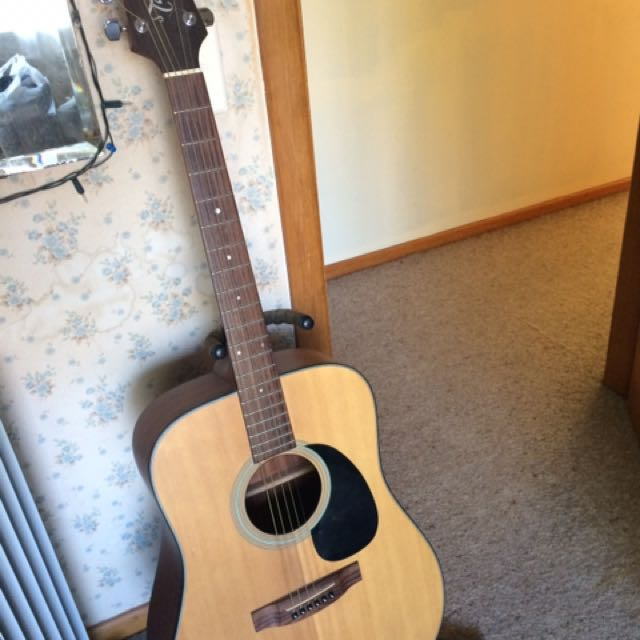 Takamine D Series Acoustic Guitar