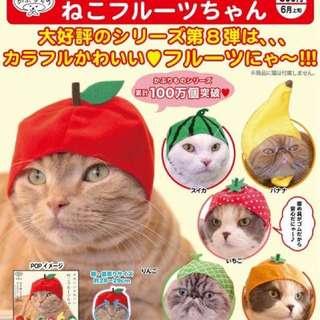 貓咪頭套 水果篇
