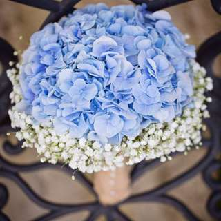Hydrangeas with babys breaths bouquet blue colour - Iona