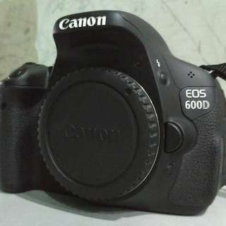 Canon EOS 600D (with Standard Kit Lens)
