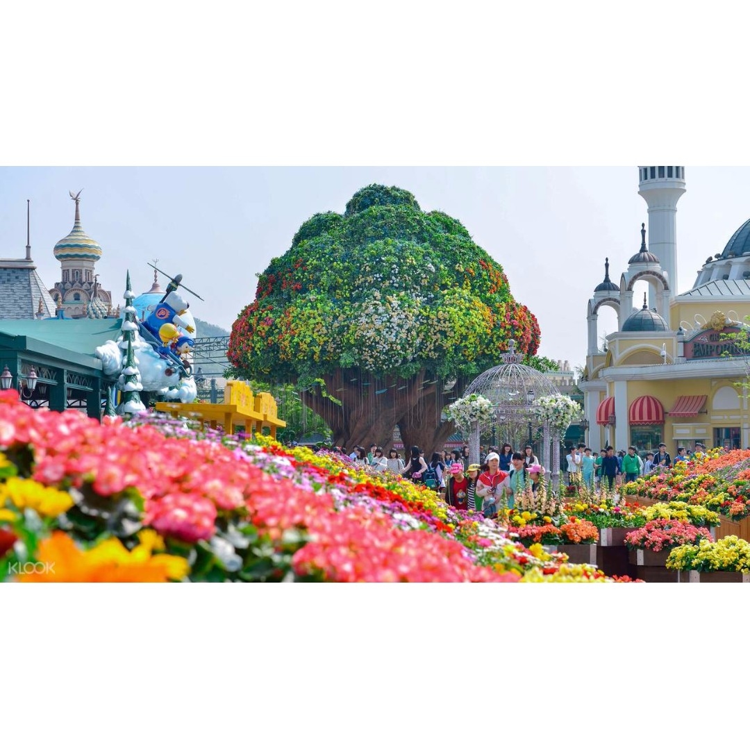 Ami Travel Everland Seoul Theme Park Promo Tickets Vouchers Disneyland Hong Kong  Adult 1 Day Pass Attractions On Carousell