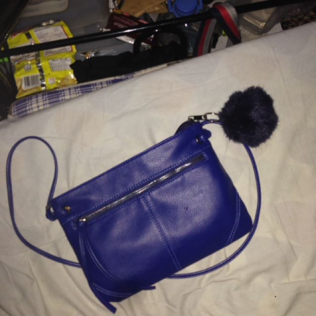Blue Bag With Furball
