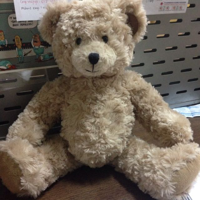Original Teddy House 15""