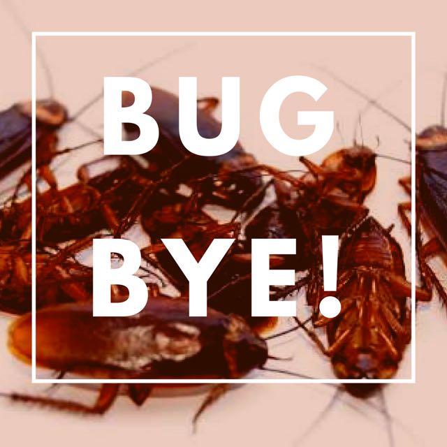 Pembasmi Kecoak, Semut, Tungau, Kutu, Lalat