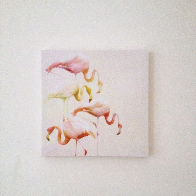 Typo Flamingo Canvas Print