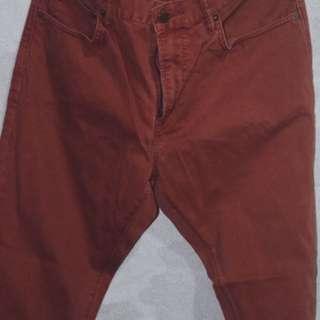 Gap Maroon Jeans