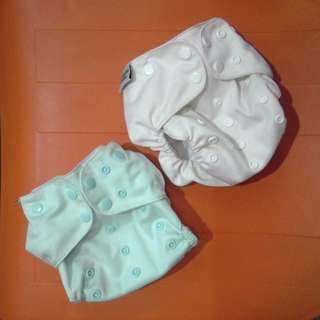 QUIGLE BUM Pocket Cloth Diapers Set of Two