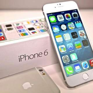 Iphone 6 & 6+