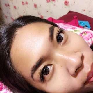 Korean Eyelash