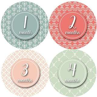 baby milestone sticker for your little one