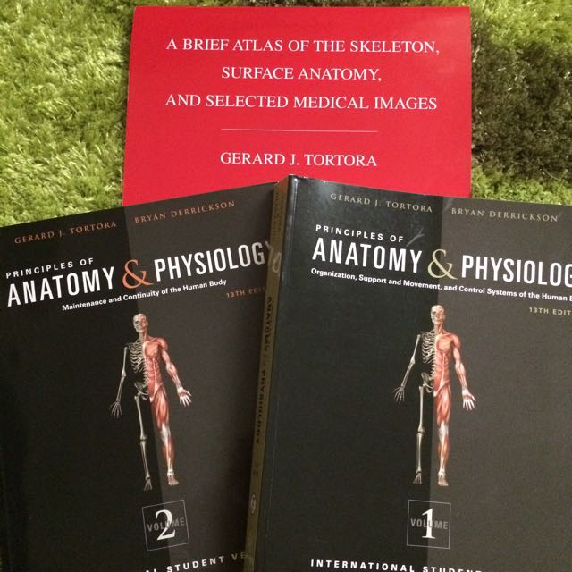Fancy Tortora Anatomy And Physiology 13th Edition Pdf Picture ...