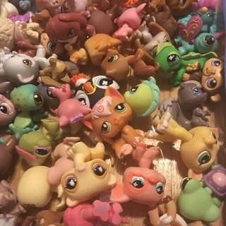 Assorted Littlest Pet Shop