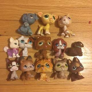 Littlest Pet Shop - Dogs