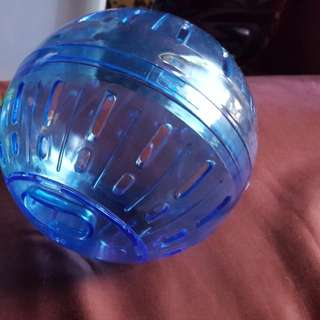 2 Hamster Balls And Small Carrying Cage NO Box