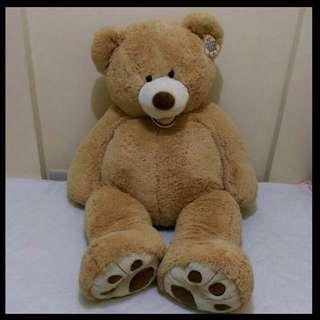 53 Inch Teddy Bear